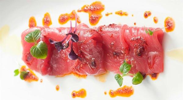 Conoce los diferentes tipos de atunes