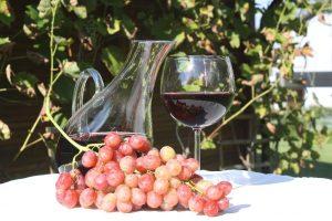 ¿Por qué son tan importantes las denominaciones de origen de vino español?